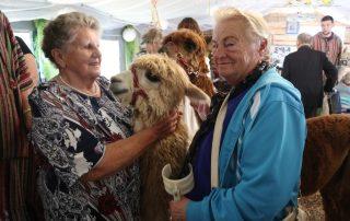 Spotkanie Seniorek z alpakami