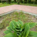 Zmiany w ogrodzie 5