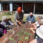 Seniorzy rozpoznają zioła
