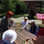 Seniorzy segregują zioła