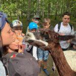 Wyjazd edukacyjny do krainy sosnowych wzgórz 13