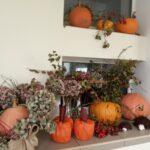 Kolory jesieni 9
